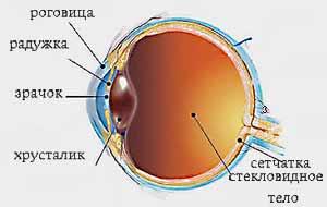 Лечение возрастной макулодистрофии сетчатки глаза